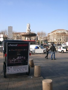 Cheval passion 2013 à Avignon