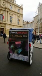 Cheval Passion,  du 15 au 19 janvier 2014 au Parc des Expositions d'Avignon.
