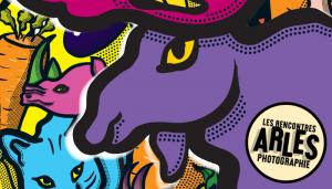 Les Rencontres d'Arles 2014, du 7 juillet au 21 Septembre 2014 à Arles