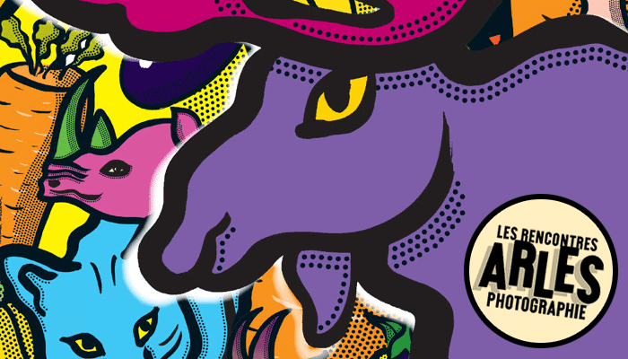 Les Rencontres d'Arles 2014: Circulez rapidement avec Taco and Co