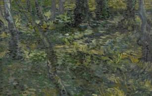 «Sous-bois» de Vincent Van Gogh à découvrir à la Fondation Vincent Van Gogh d'Arles