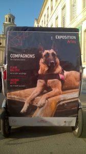 Roya Canin fête ses 50 ans sur Arles avec deux expositions jusqu'au 24 Novembre 2018