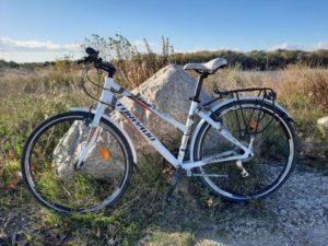 Nouveaux vélos (4)