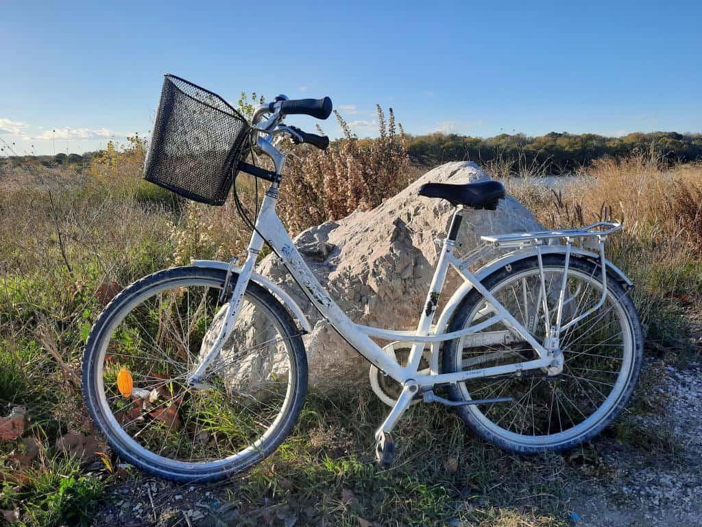 Nouveaux vélos (6)