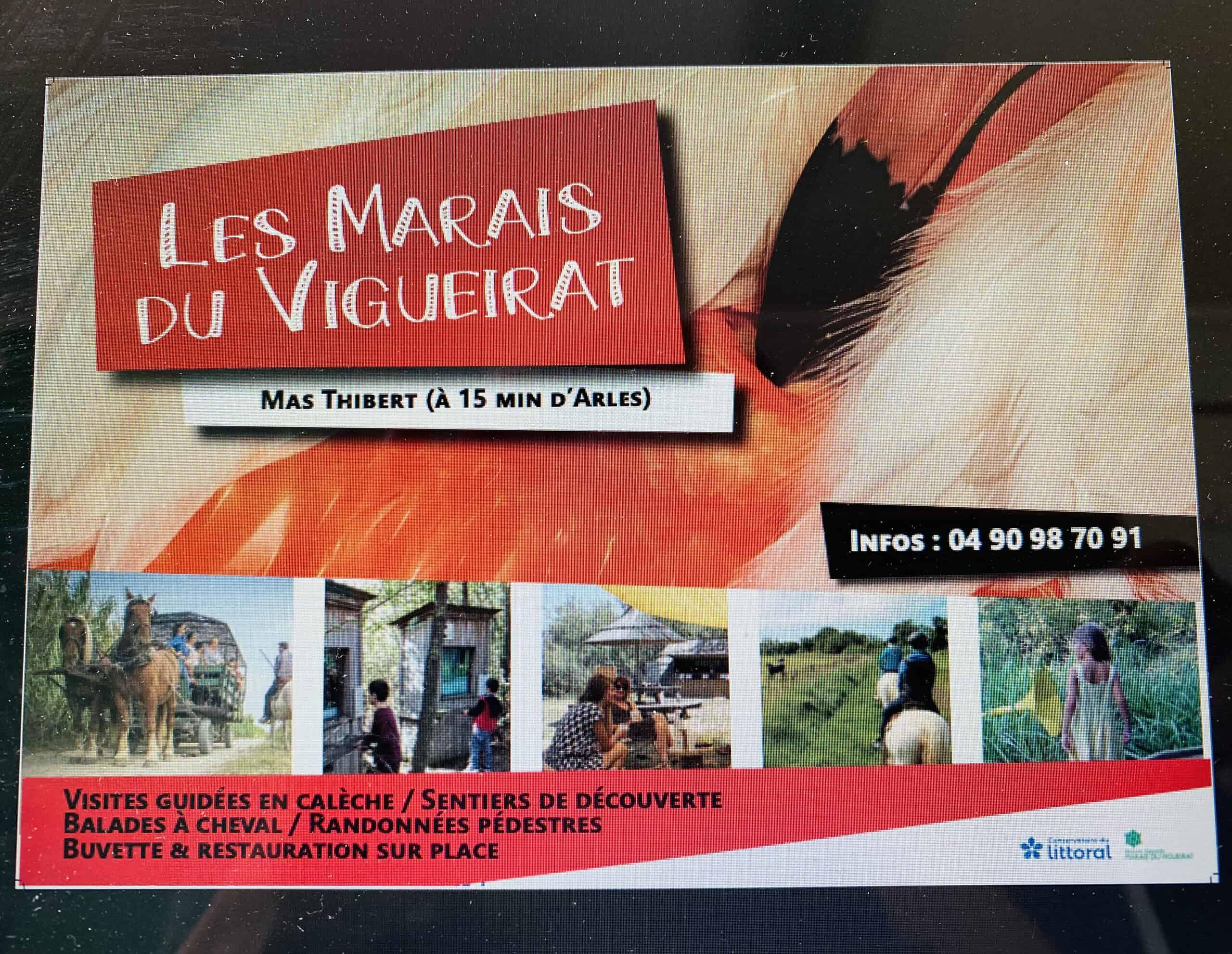 Les Marais du Vigueirat, un espace protégé à découvrir en Camargue